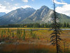 Marsh at Cave & Basin National Historic Site<br /> Banff Townsite, Alberta, Canada