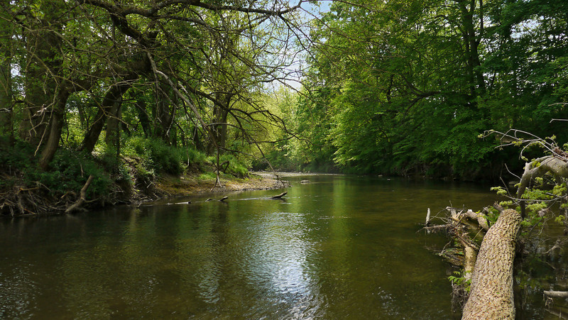 White Clay Creek<br /> White Clay Creek State Park, Newark, DE