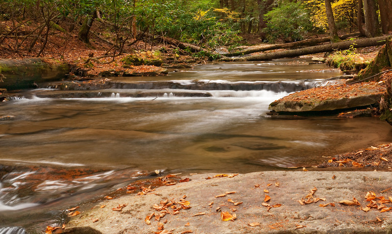 Tolliver Creek above the falls<br /> Swallow Falls State Park, near Oakland, MD