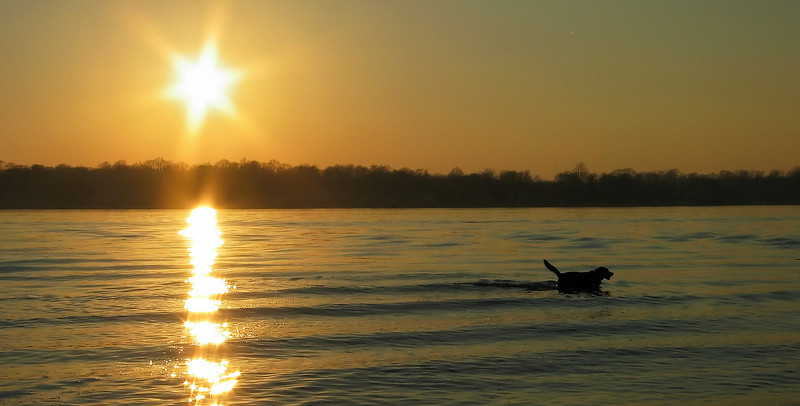 Sunset on the South River<br /> Quiet Waters Park, Annapolis, MD