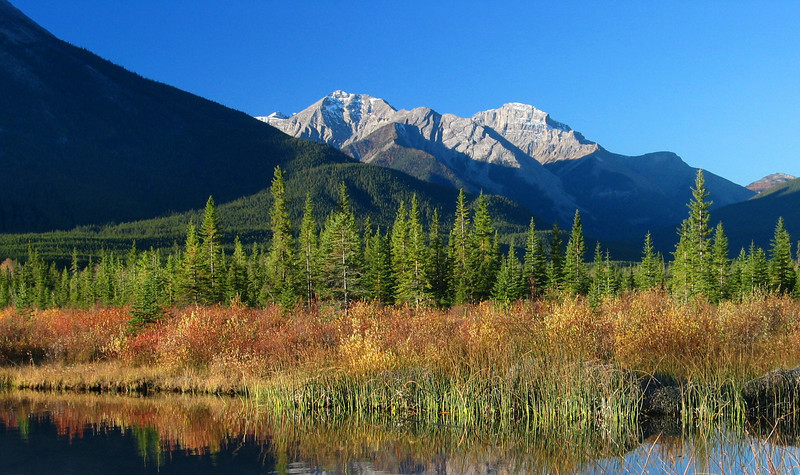 Autumn colors at Vermillion Lakes in early morning<br /> Banff National Park, Alberta, Canada