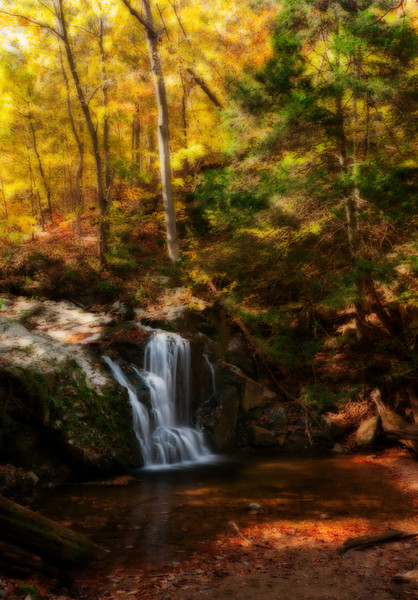 Cascade Falls and hemlock <i>(painterly Orton effect)</i> Patapsco Valley State Park, Elkridge, MD