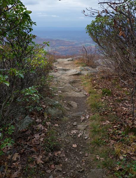 Mt. Marshall north summit in autumn<br /> Appalachian Trail, Shenandoah National Park, VA
