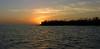 Sunset in mangrove swamp (from boat)<br /> Ten Thousand Islands National Wildlife Refuge, FL