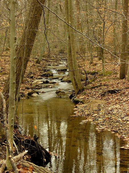 Bear Creek near Sugarloaf Mountain<br /> Barnesville, MD