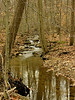 Bear Creek near Sugarloaf Mountain<br /> Barnesville, MD