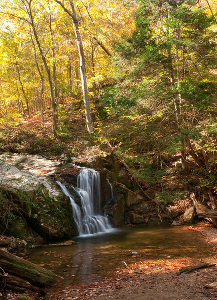 Cascade Falls and hemlock<br /> Patapsco Valley State Park, Elkridge, MD