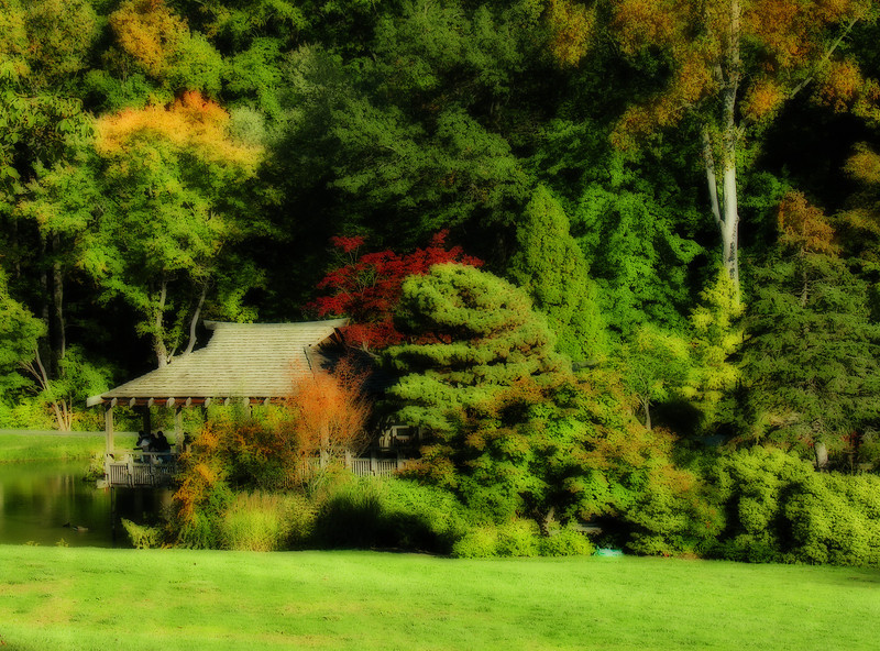Autumn in the Gude Japanese Garden <i>(painterly Orton effect)</i> Brookside Gardens, Wheaton, MD