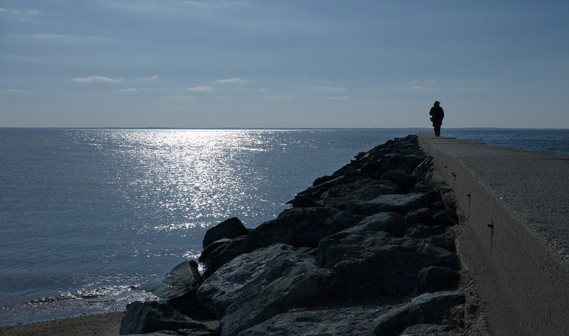 Winter birding from the jetty at the mouth of the Potomac River<br /> Point Lookout State Park, Scotland, MD