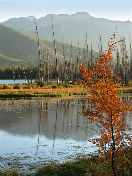 Vermillion Lakes<br /> Banff National Park, Alberta, Canada
