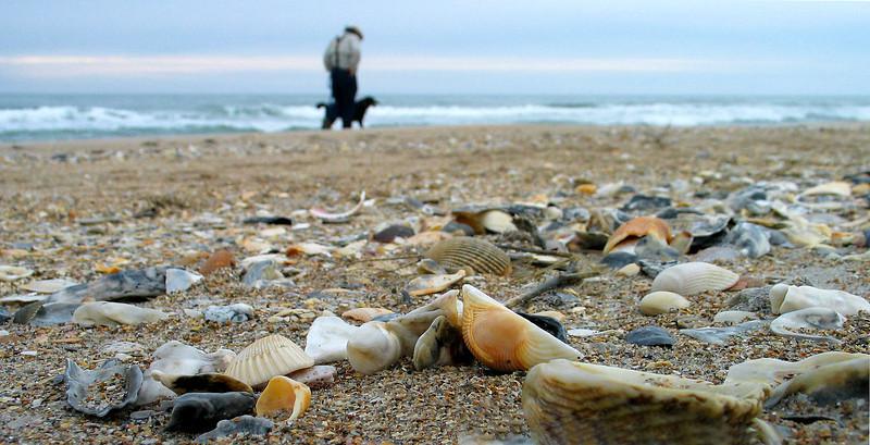 Walking the dog on the beach<br /> Topsail Island, NC