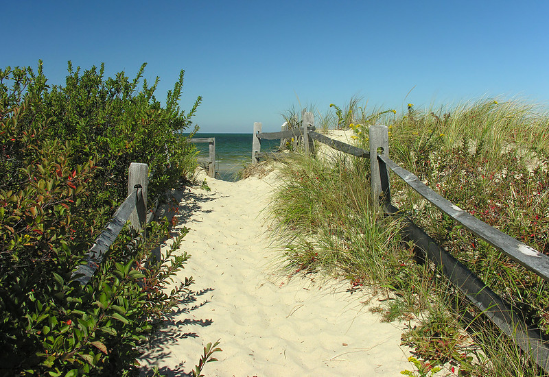 Beach trail to Cape Cod Bay<br /> Spruce Hill Conservation Area, Brewster, Cape Cod, MA