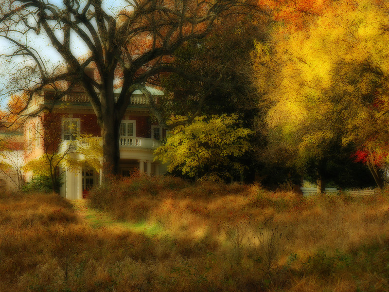 East meadow and house in autumn <i>(painterly Orton effect)</i> Woodend Sanctuary, Chevy Chase, MD