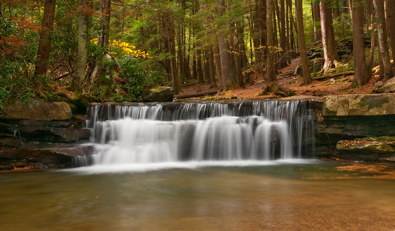 Tolliver Falls in the glorious hemlock forest<br /> Swallow Falls State Park, near Oakland, MD