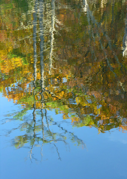 Autumn Pond Reflection<br /> Michaux State Forest, PA