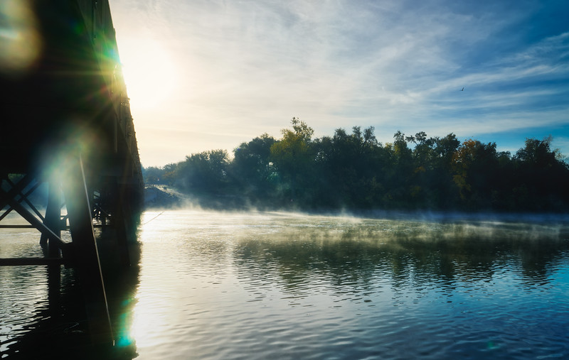 A foggy, late fall morning along the American River Parkway