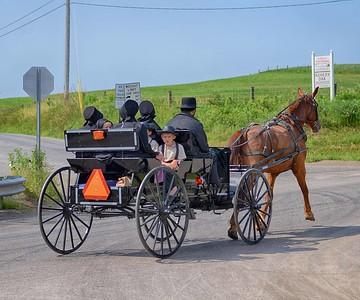 Amish 11