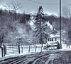 Amish 13