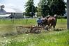 Amish 5
