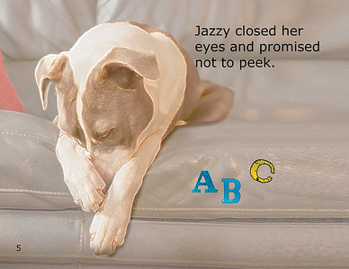 Hide and Seek with Jazzy includes cover5