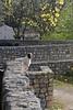 ZO 76 Dog with Stone Walls
