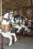 ZO 17 Carousel in Salisbury MA