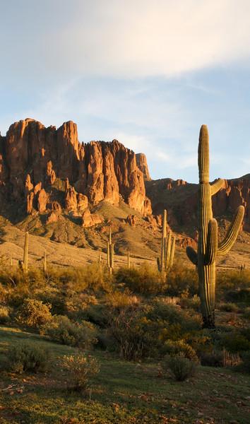 AZ 12 Sunset and Saguaro