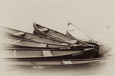 Autumn Canoes II