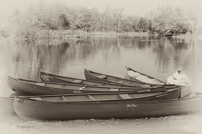 Autumn Canoes I