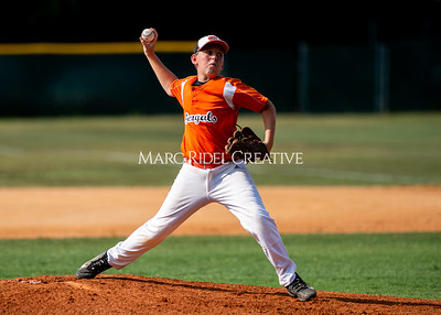 Fuquay-Varina vs West Lake baseball championship at Broughton high School. June 2, 2019. D4S_0239