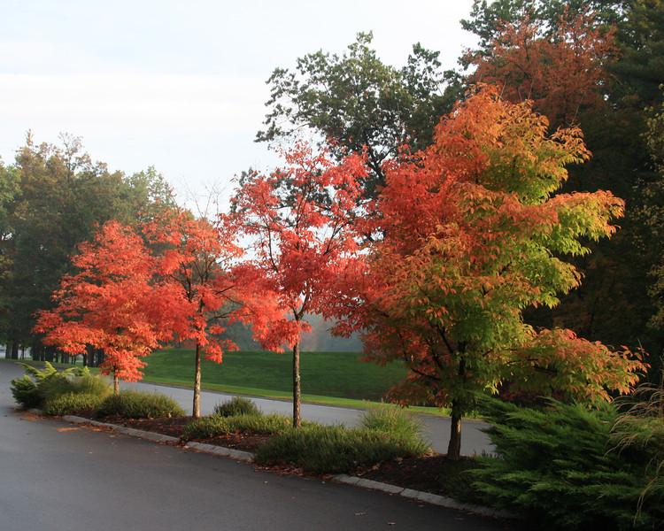SC 63 Overlook Golf Course, Hollis, NH