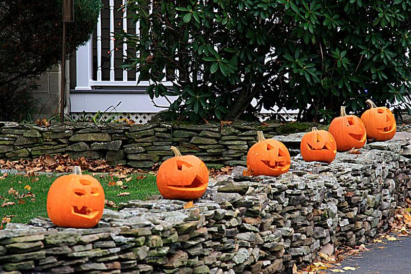 SC 161 Pumpkins on a Wall