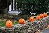 SC 161 Pumpkins on a Wall