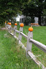 SC 107 Pumpkins on Posts