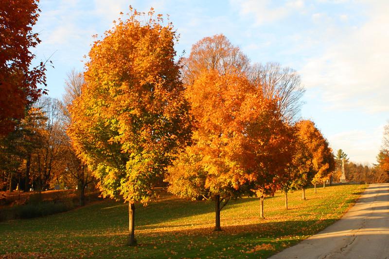 SC 248 Autumn in Vermont