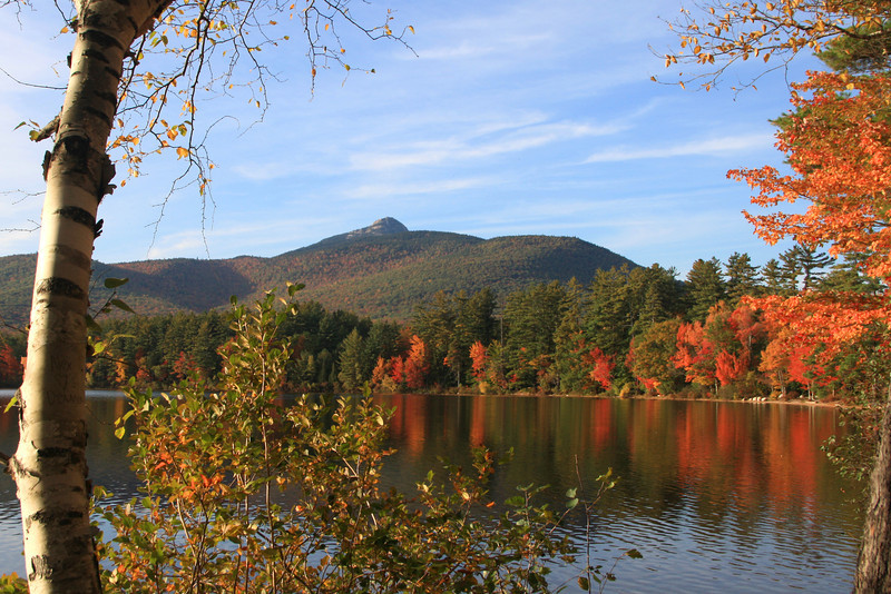 SC 149 Autumn at Chocorua