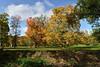 Moreland Hills in Autumn