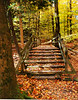 Fall staircase