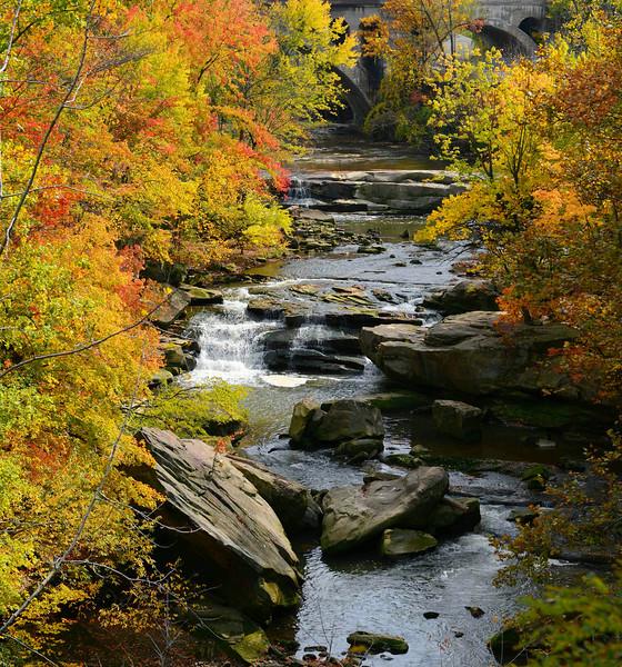 Berea in Fall Color
