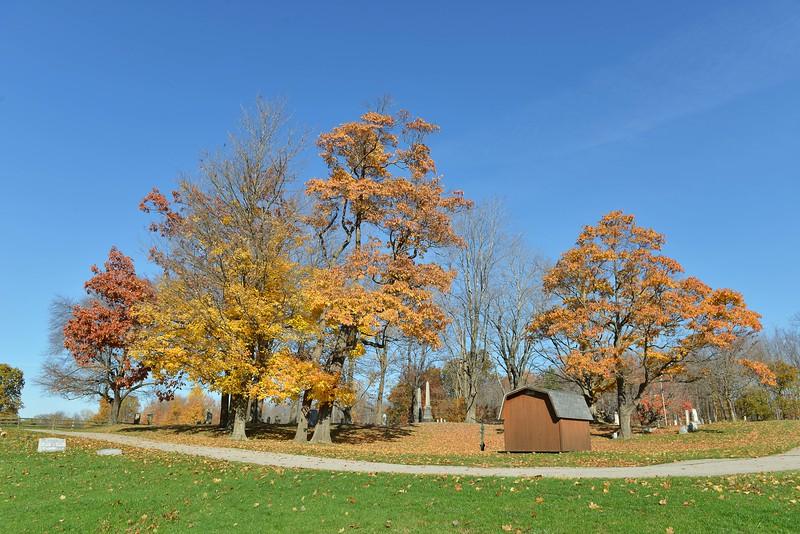Autumn October 11