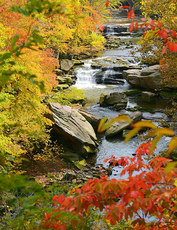 Tinker's Creek in Fall