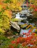 Tinker's Creek in Fall