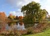 Holden Arboretum in Fall