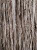 Weatherd Split Oak