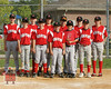 Hinsdale Red Dogs 8x10