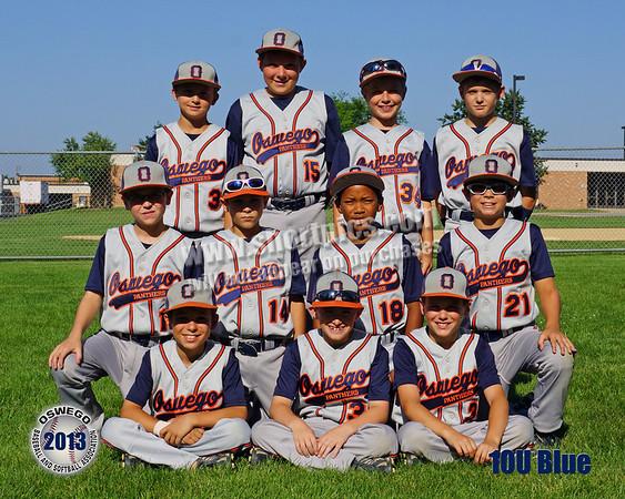 2013 10U Blue Team Picture 1