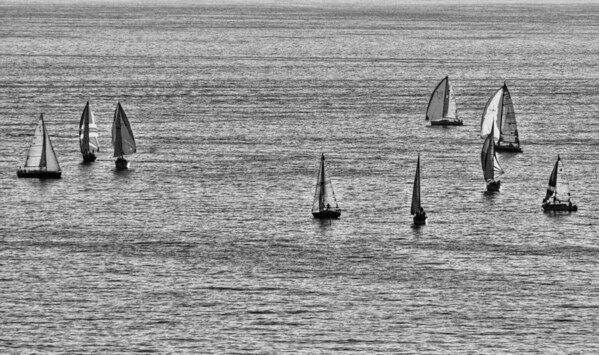 Sailboats on Lake Erie
