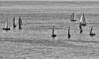 Sailboats on Lake Erie