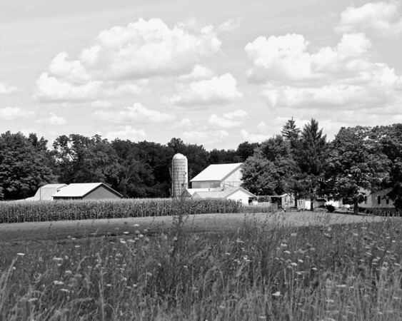 Amish Farm in Geauga County