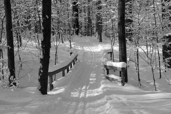 Lake Metroparks Winter Scene
